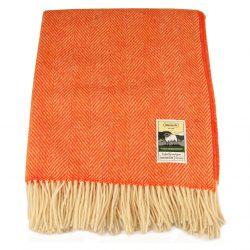 KB27-plain-v-orange